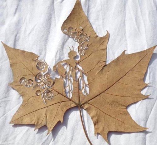 Lorenzo-Duran-Leaf-Art-5[1]