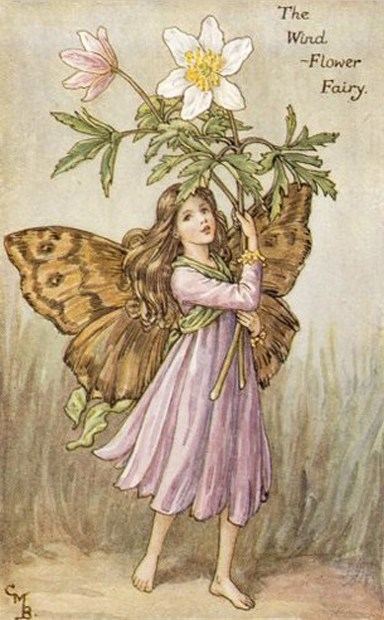Cicely-Mary-Barker08