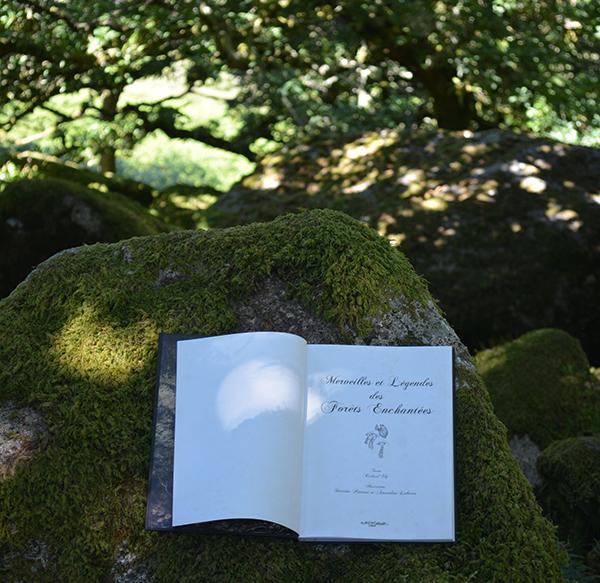 wistmanwoodforets