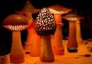 L'ambiance magique des lampes-champignons