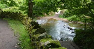 Visite aux fées de Cottingley