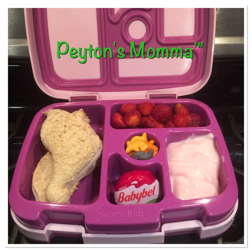 Dinosaur Turkey and Cheese Bento Box
