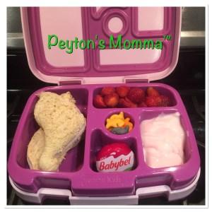 Dinosaur Turkey and Cheese Bento Box