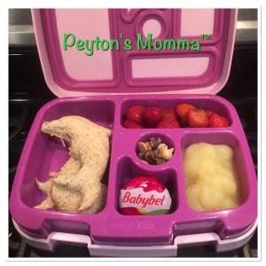 Dolphin Peanut Butter and Jelly Bento Box