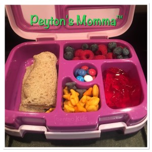 Penguin Sandwich Bento Box