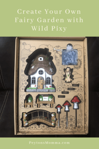 Fairy Garden Wild Pixy