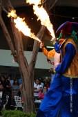 mia-simo-pezmapache-carnaval-2013-republica-dominicana-6985