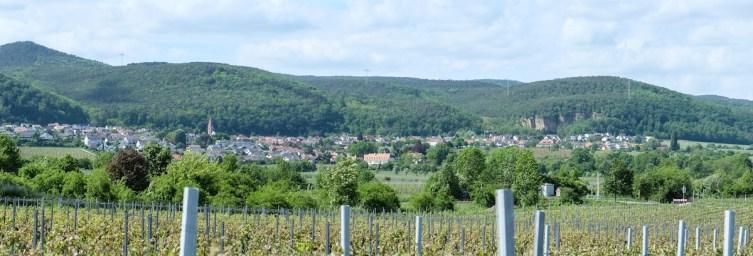 Ausblick vom Weingut © LL kingscreek.de