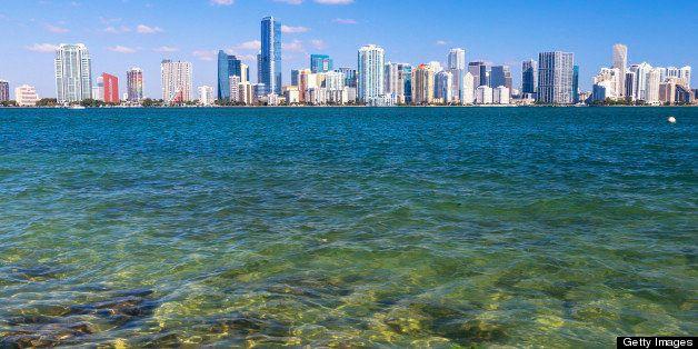 Miami skyscrapers across water