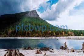 Rattlesnake Ridge 2020 Crack With License Key Free Download