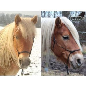 Schopfverlängerung Microring Pferdehaar Extensions