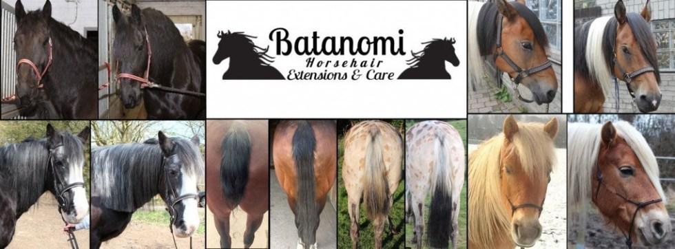 Batanomi Pferdehaar Extensions & Care