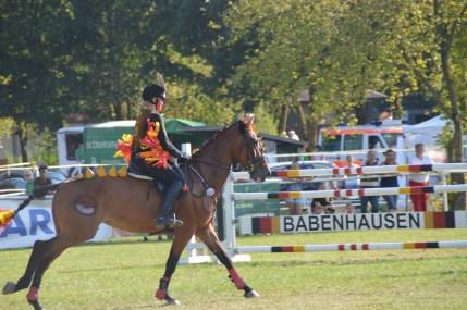 zuchtturnier-babenhausen-2016-47