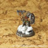 Fjell Warrior Leader - Seite1