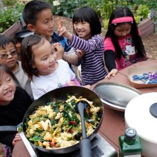 Cooking in the Garden