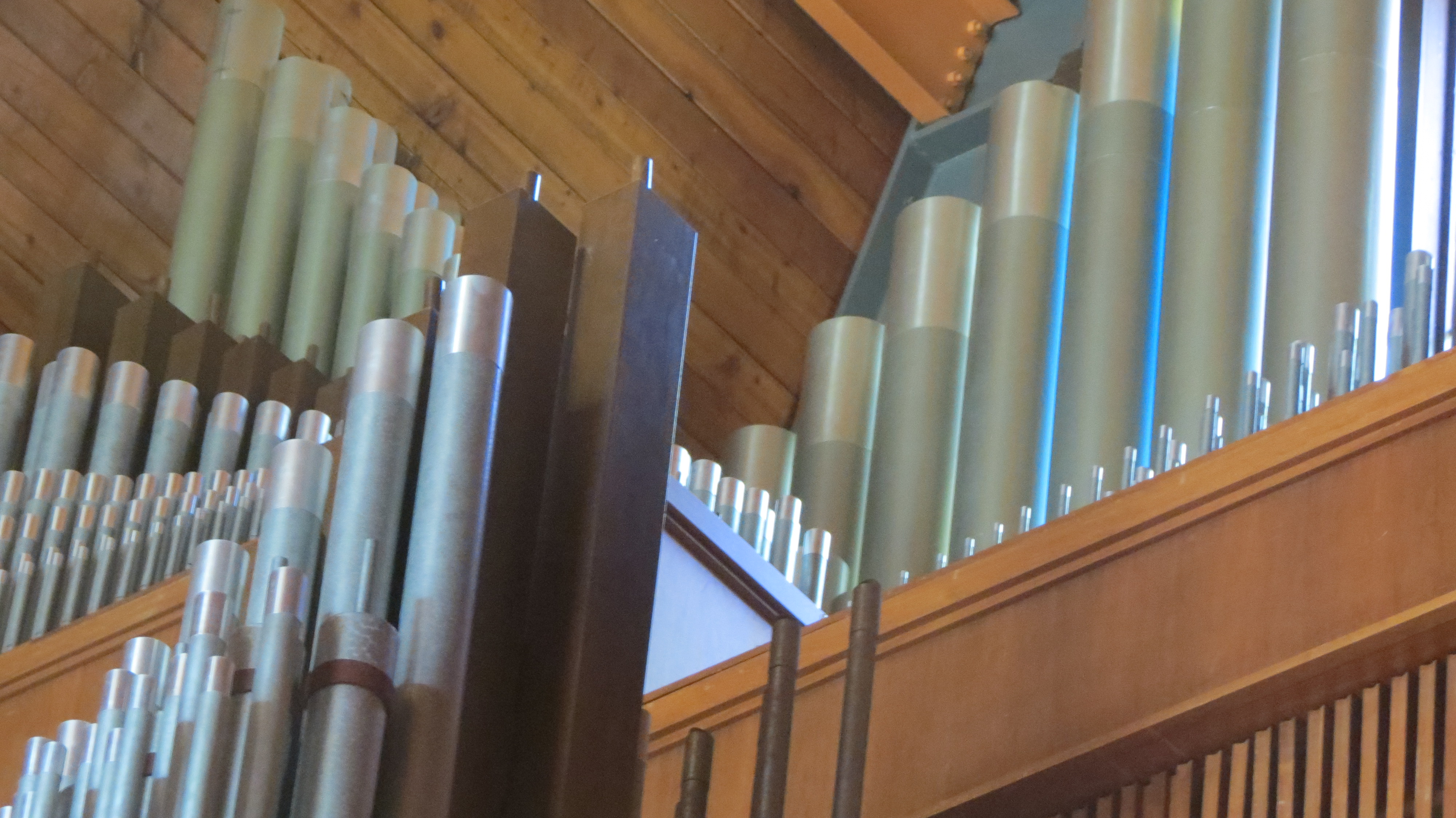 Park Forest Organ