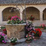 Assisi 2021_07_05, PTsch (237) - klein