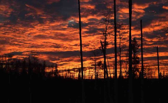 Mother Nature offered up some spectacular skies Thursday evening as the sun set. Bill Phillips photo
