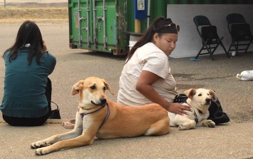 Rainbow Thomas with her dogs Allie and Luna wait at the Emergency Operations Centre. Bill Phillips photo