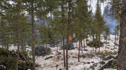 Cariboo wildfire risk reduction project nears completion