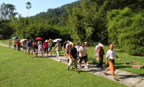 Guided Walk at Penang Botanic Gardens