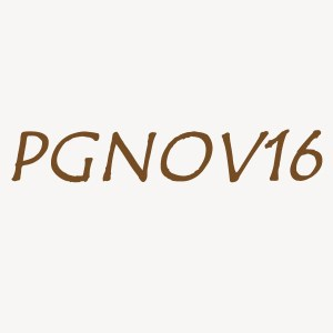 Use code PGNOV16 for a 10% discount all through November