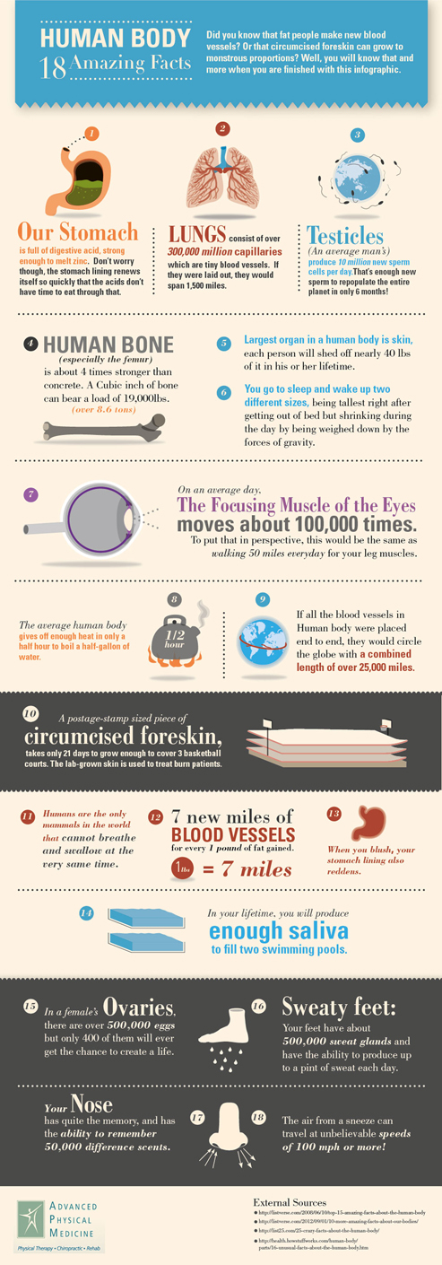 18 Facts About the Human Body