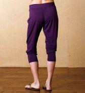 Harem pant - purple