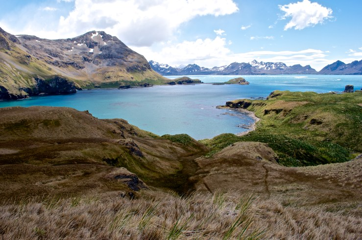 Final destination of our hike started from Grytviken.