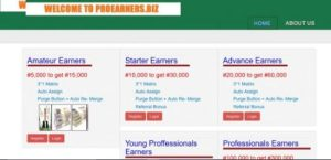ProEarners – Get 200% with this  New Ponzi Scheme