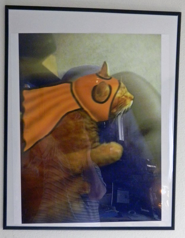 Thanks to Andy, Louie the Ginger Cat as Captain Me-Ow is tilted in his frame! To live with cats is to accept a certain level of chaos and destruction!