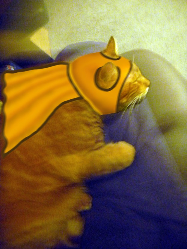 In his spare time, Louie was a kitty super hero. (Captain Me-Ow)