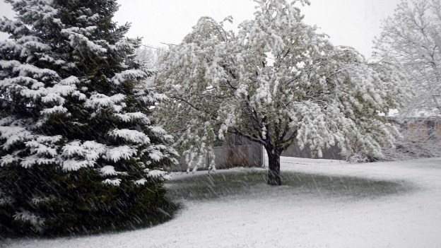 May 8 snow 2014 b