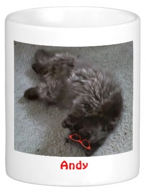 Andy can mug, too!