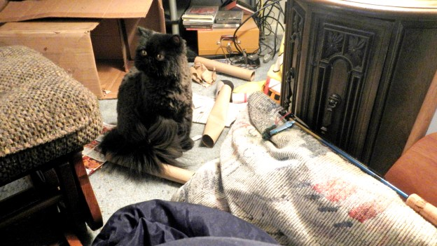 """""""What to do? What to do?"""" Dougy wanders over to his personal mess to see what he can do."""