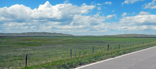 Wet meadows in the Nebraska Sandhills are inches above the Ogallala aquifer. It's like walking on a green marshmallow to walk on a wet meadow!