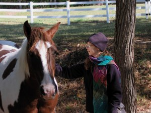 Ruth explains things to the horse