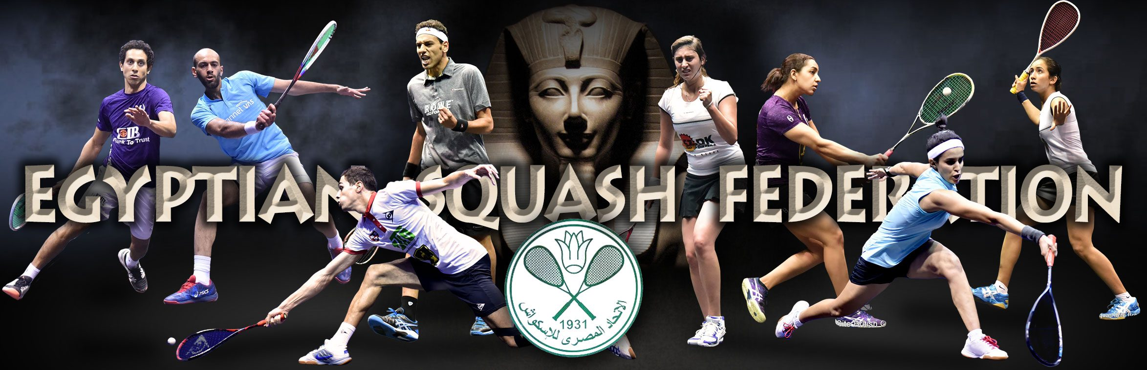 Egyptian Squash Federation