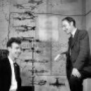 Crick & Watson with their DNA model, 1953