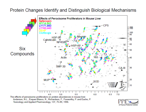 protein changes in biological mechanisms