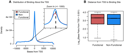 Distribution of functional binding about the TSS