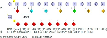 oligonucleotide conplex