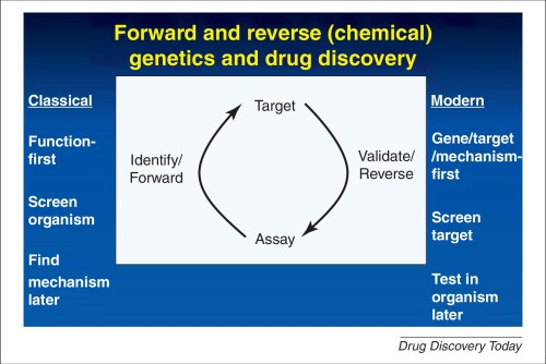 drug discovery science