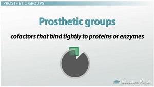 prosthetic-groups