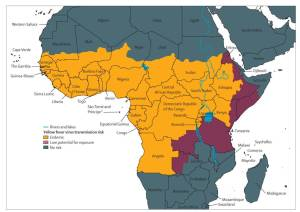 global yellow fever risk map