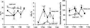 Comparison of gas composition (O2 and CO2) and water content between light and heavy soils inhabited by S. carmeli