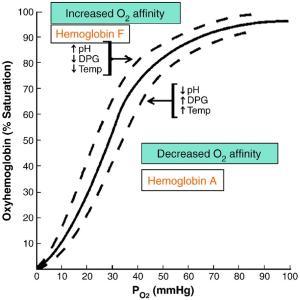 The oxygen-dissociation curve