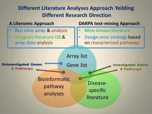 Different Literature Analyses Approach Yeilding