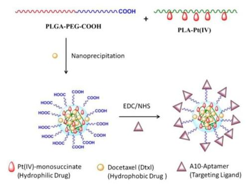Pt(IV)-PLA drug conjugates were blended with PLGA-PEG and docetaxel to form nanoparticles  nihms-401532-f0010