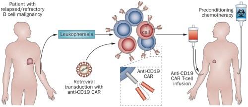 cart_cancer_treatment_biotech